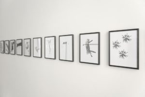PF Ausstellungsansicht3klein